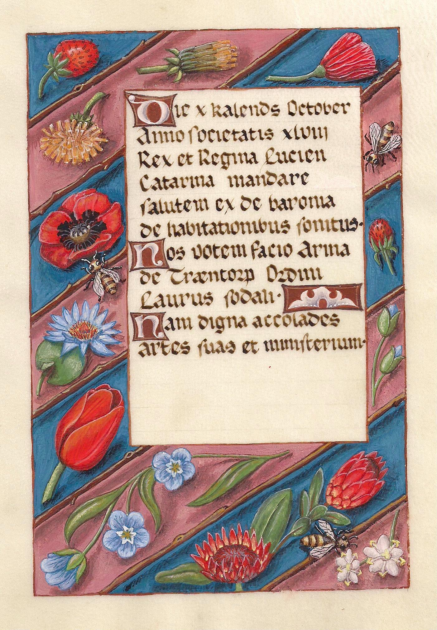 Arina-scroll